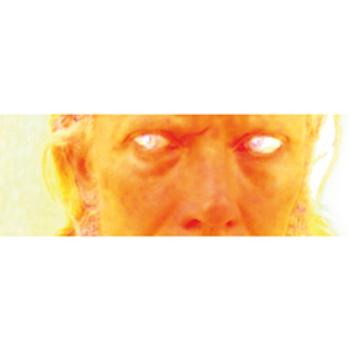 t.k. bollinger shy ghosts album
