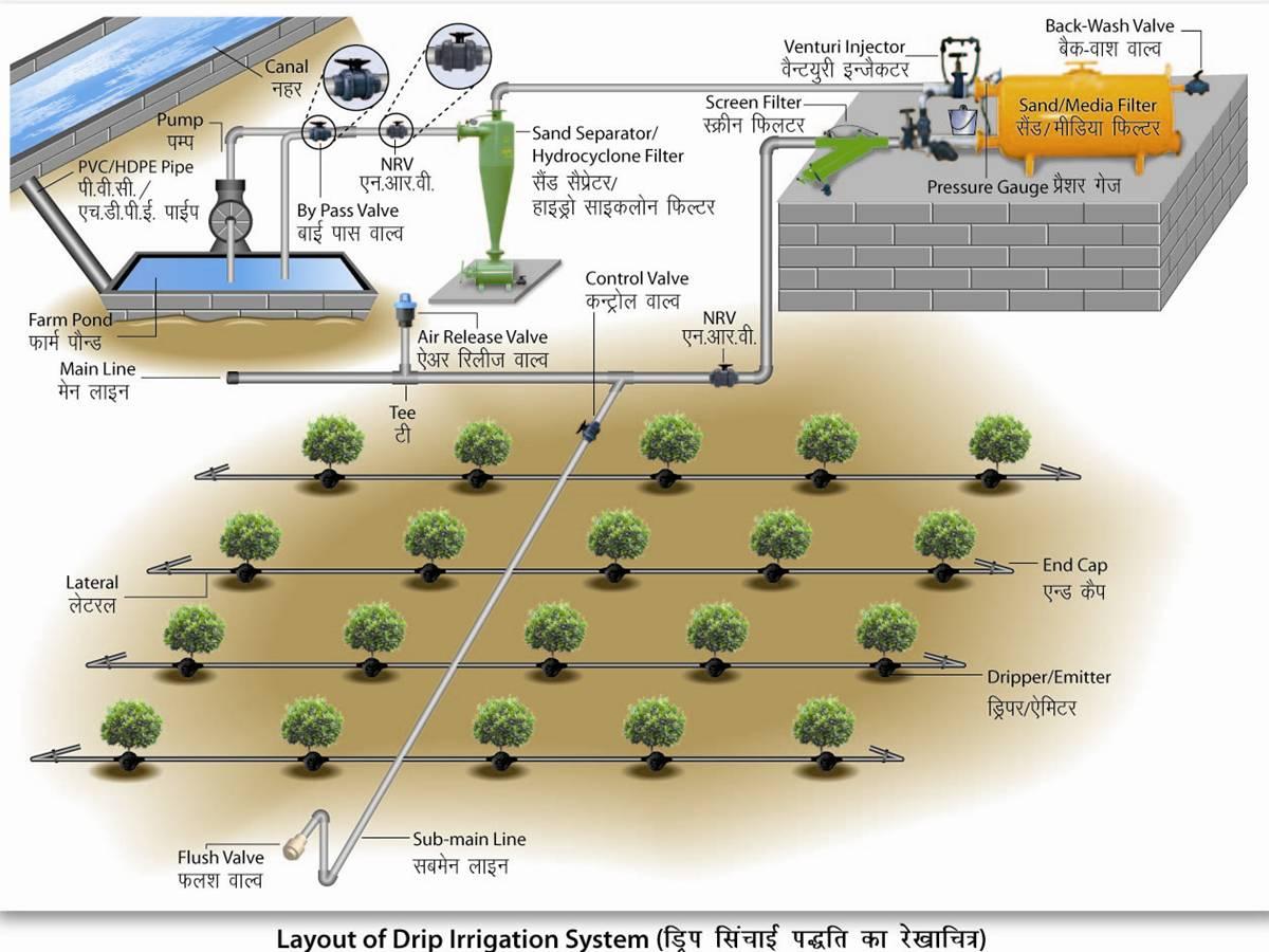 Drip Irrigation In Nigeria