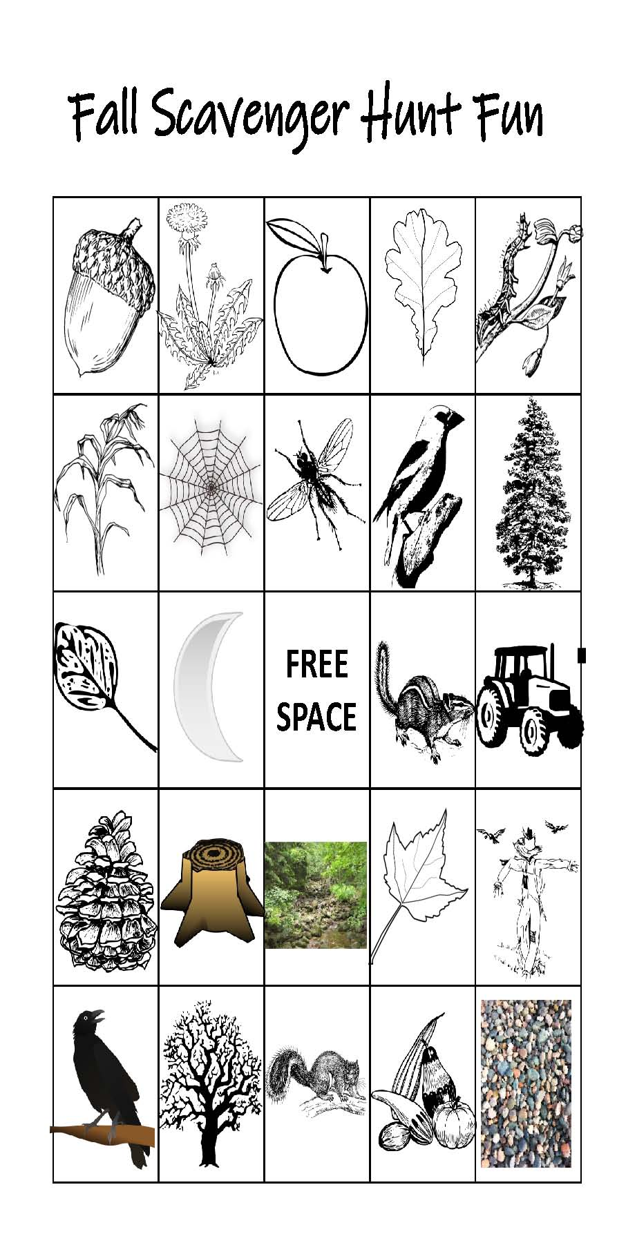 image about Fall Scavenger Hunt Printable identify Drop Scavenger Hunt Printable by means of Katies Homeschool Cottage