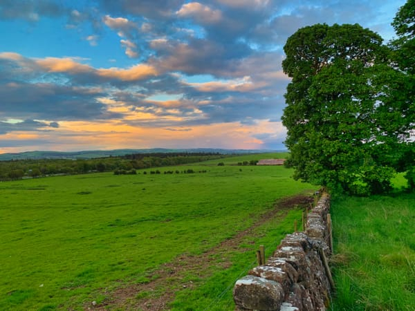 Stone wall and field